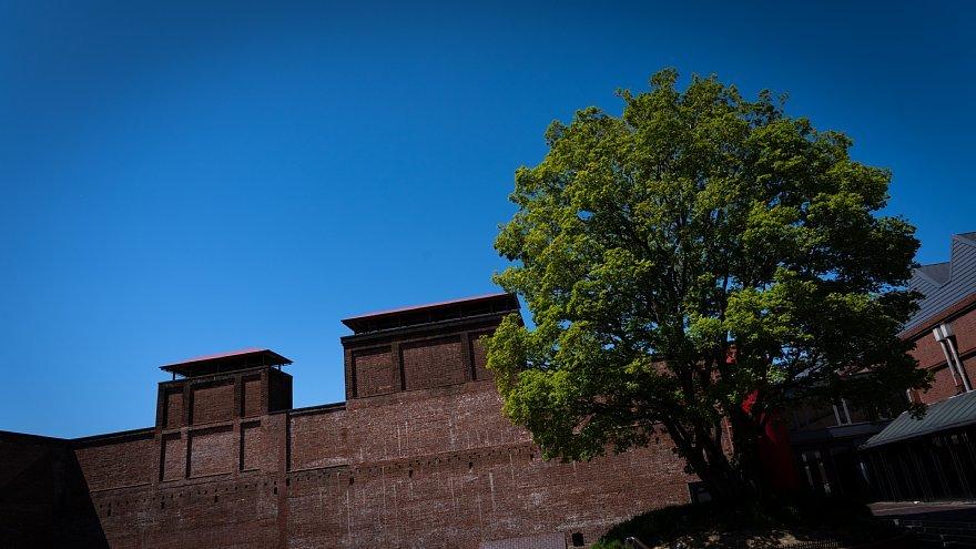 赤煉瓦の鋸屋根工場_d0353489_09012268.jpg