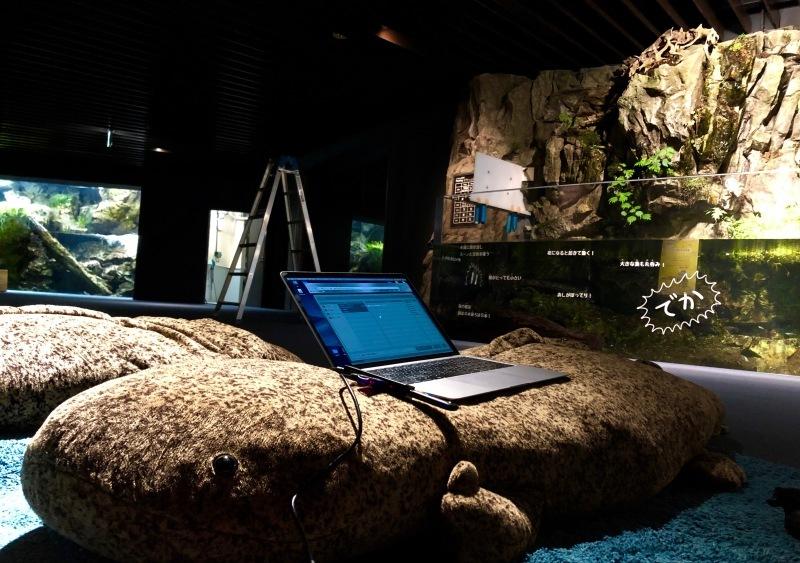 京都水族館「ぬめぬめワールド」_c0006305_21372005.jpg