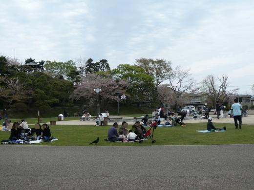 函館公園ニュース  5月6日(月)_e0145841_11542245.jpg