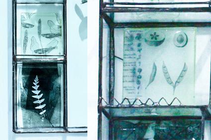 「 松山美恵 植物を楽しむためのガラス展 」 ~ LIFE DESIGN STUDIO 5月展_d0217944_08564735.jpg