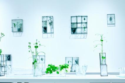 「 松山美恵 植物を楽しむためのガラス展 」 ~ LIFE DESIGN STUDIO 5月展_d0217944_10224463.jpg