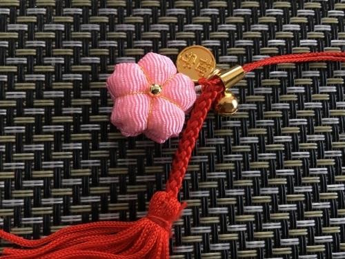 京都の旅\'19Ⅲ 京都桜旅その3_e0326953_23111769.jpg