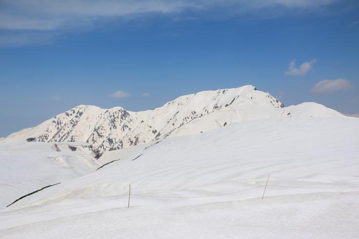 立山・雪の大谷_c0338583_14231451.jpg
