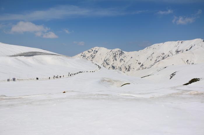 立山・雪の大谷_c0338583_14245889.jpg