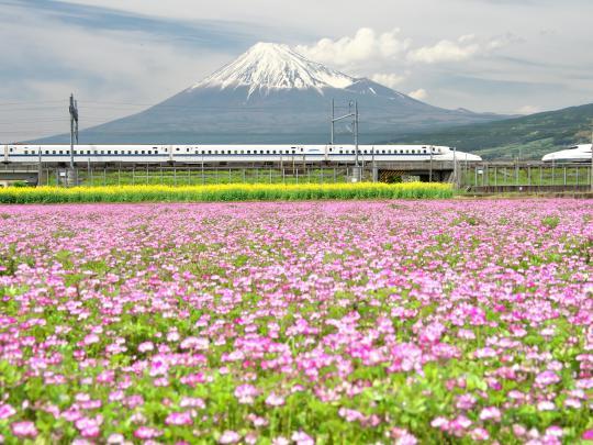 新幹線と富士山_f0266284_13595820.jpg
