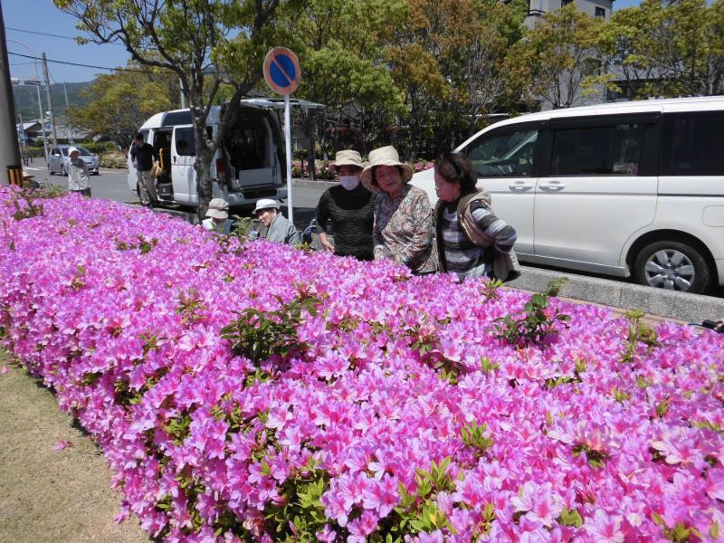 GWに満開な花は……(^o^)_f0220087_20173521.jpg