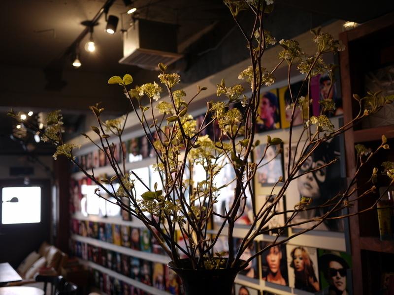 今週のWORLD BOOK CAFEさんは「ピラカンサス」。2019/05/04。_b0171193_00234812.jpg