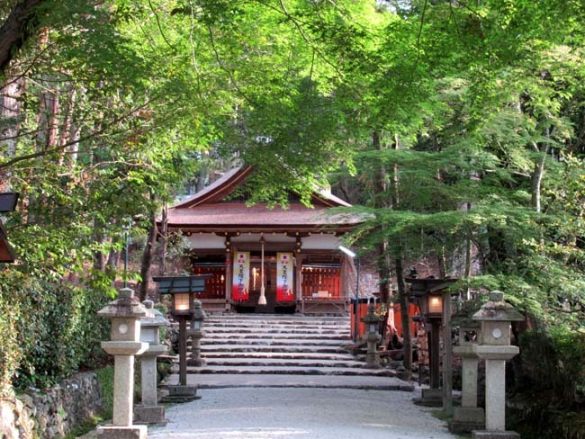 太田神社 カキツバタが盛り_e0048413_21171783.jpg