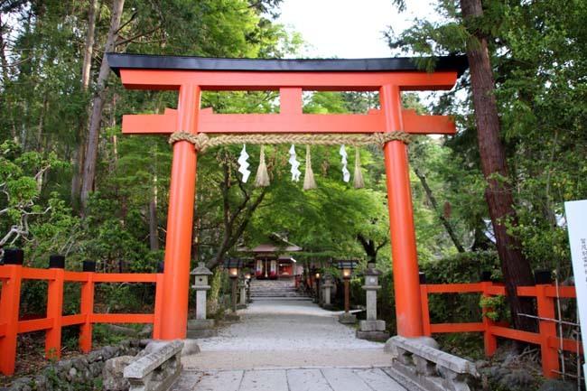 太田神社 カキツバタが盛り_e0048413_21172097.jpg