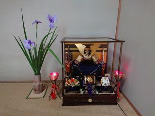 花菖蒲_c0165824_17465193.jpg