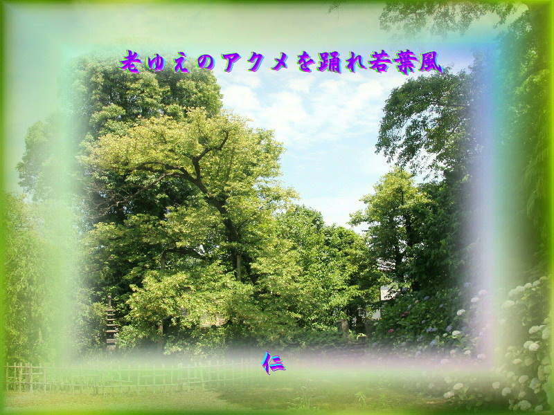e0017651_23094196.jpg