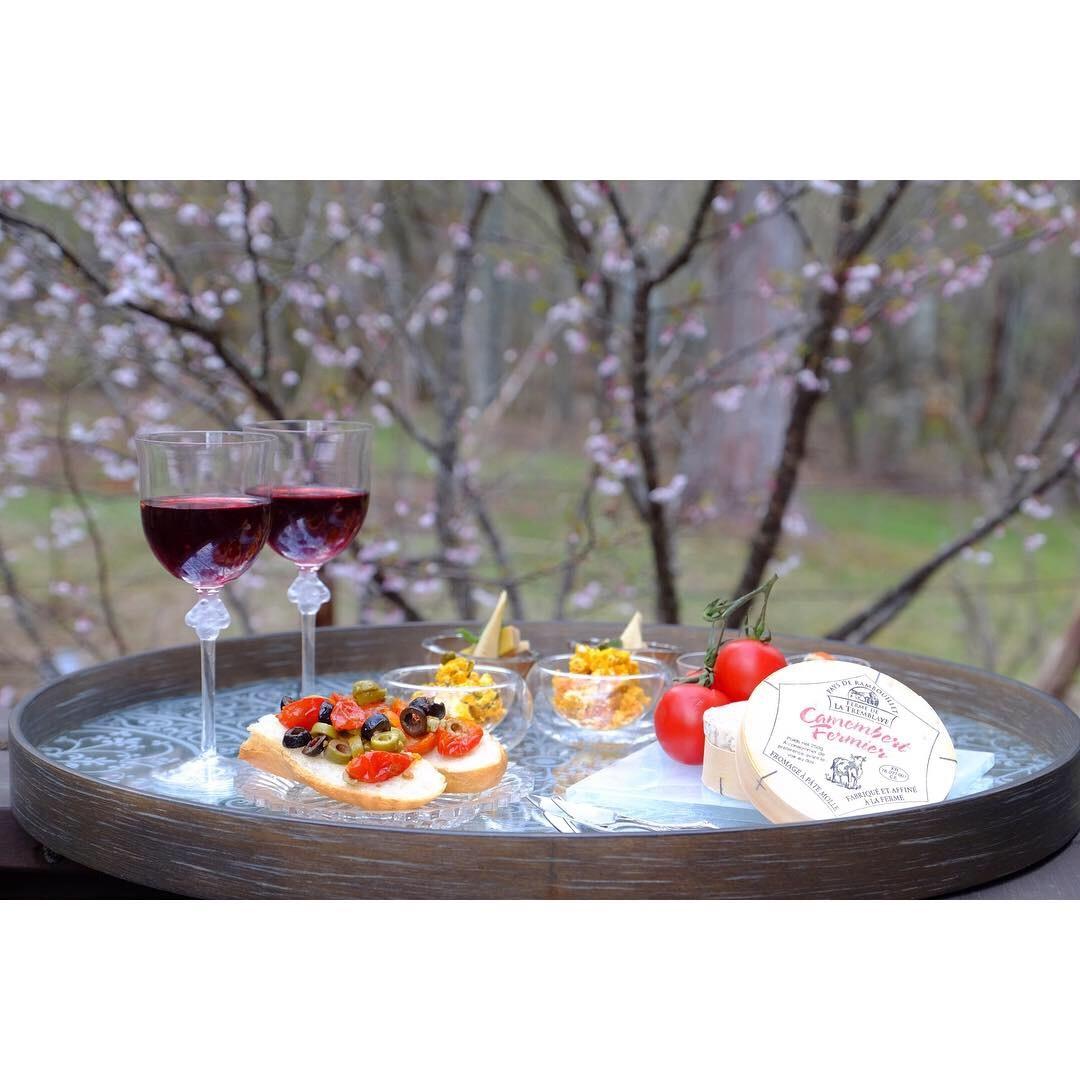 富士桜の下で…_a0335867_12100519.jpeg