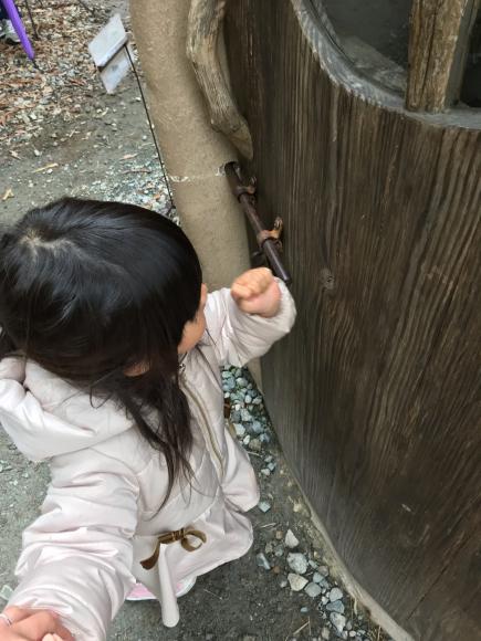 ぬくもりの森 その②_e0164874_11272821.jpg