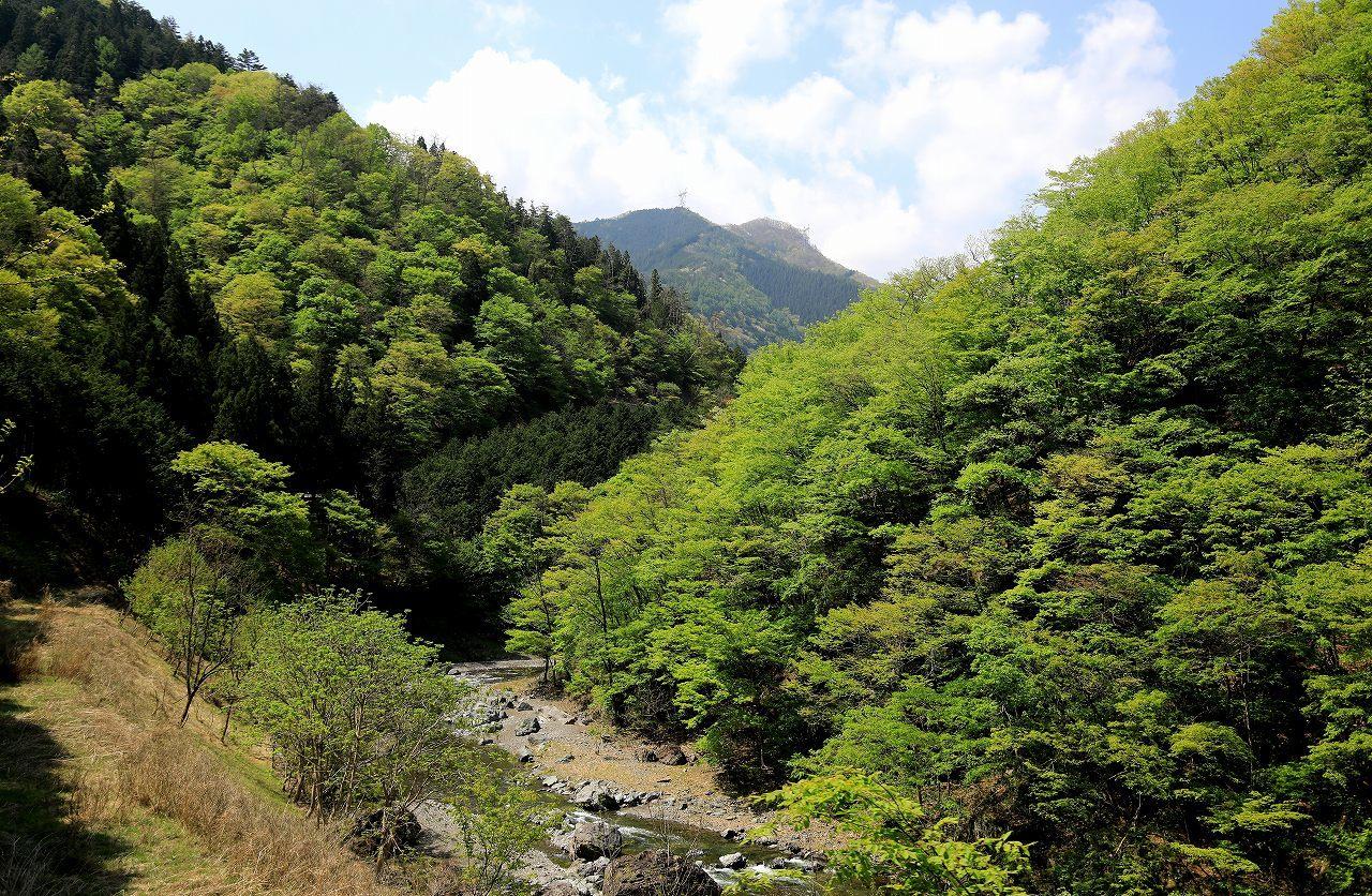 群馬県のお山にて_f0296999_18405518.jpg