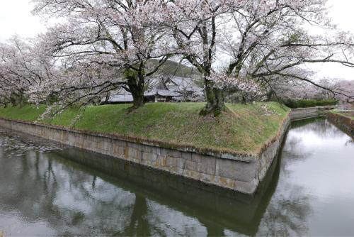 天界の村を歩く2 関東山地 南牧川_d0147406_16240054.jpg