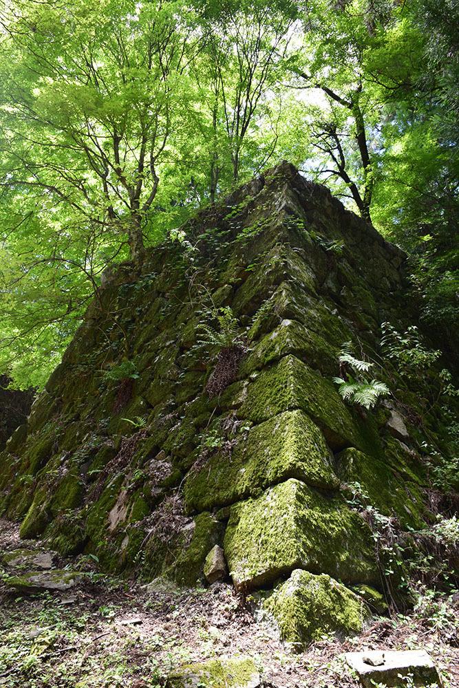 日本最大の山城、高取城登城記。 その4 <大手門~二ノ丸>_e0158128_11474254.jpg