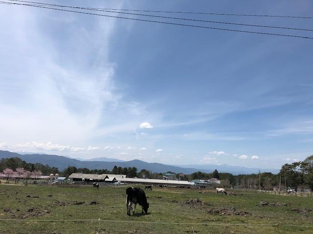 雄大な山々に囲まれまったりとリフレッシュ☆_c0152341_10373935.jpg