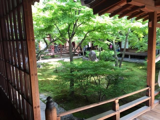 20190502 京都へ_d0145345_20295678.jpeg
