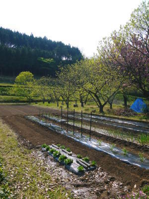 米作りの挑戦(2020年) 昨年より1週間早く苗床を作りました!(前編:米作りに取り組むわけとこの地の環境)_a0254656_18100451.jpg