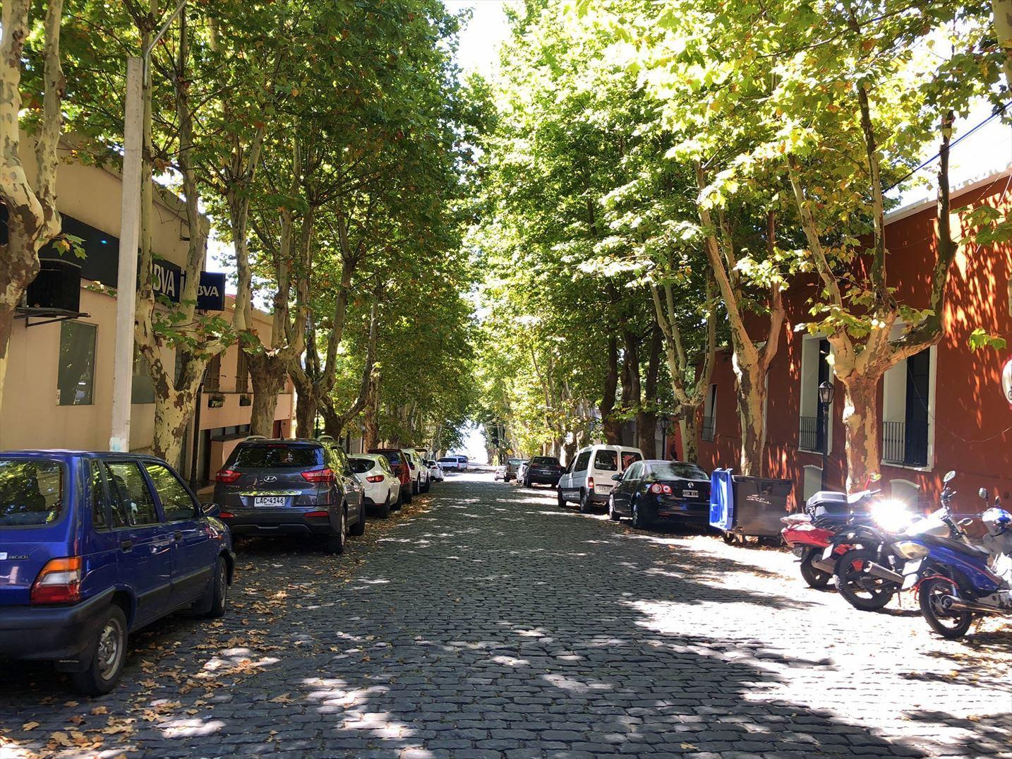 中南米の旅/33 緑に囲まれた街コロニア@ウルグアイ_a0092659_23314725.jpg