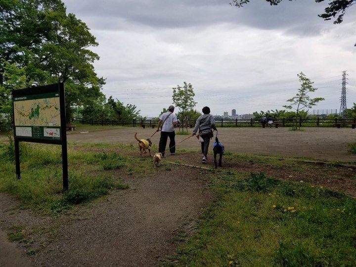(再)第2回・子豚組パックウォーク@小山内裏公園 開催のお知らせ♪_c0372561_14191518.jpg