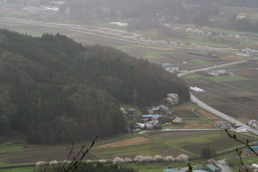 雨桜 - 2019年早春・釜石線 -_b0190710_22095473.jpg