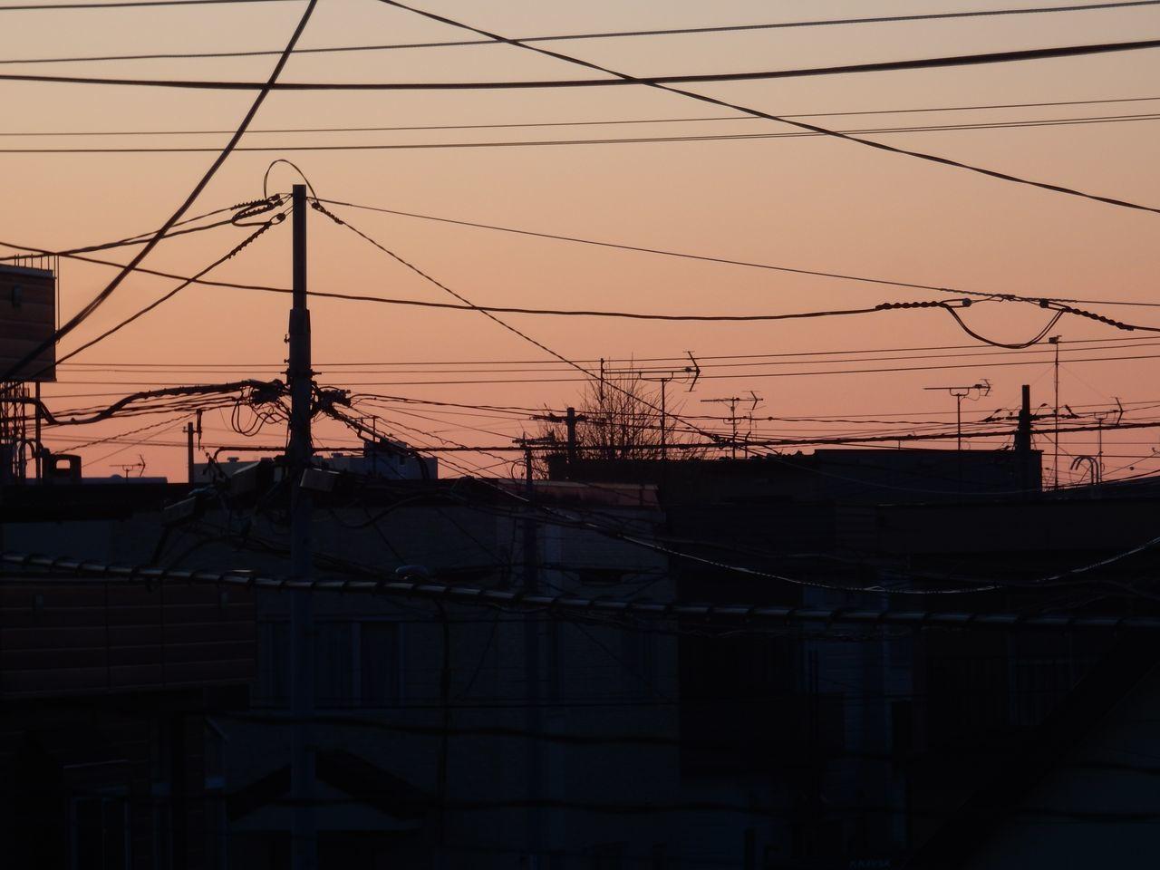 気温が激しく上下する毎日_c0025115_22204546.jpg