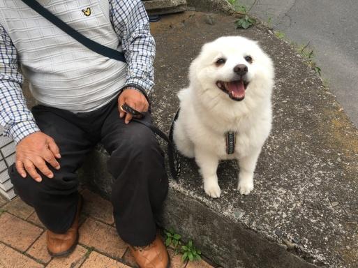 アイドル犬_a0044241_18011601.jpg