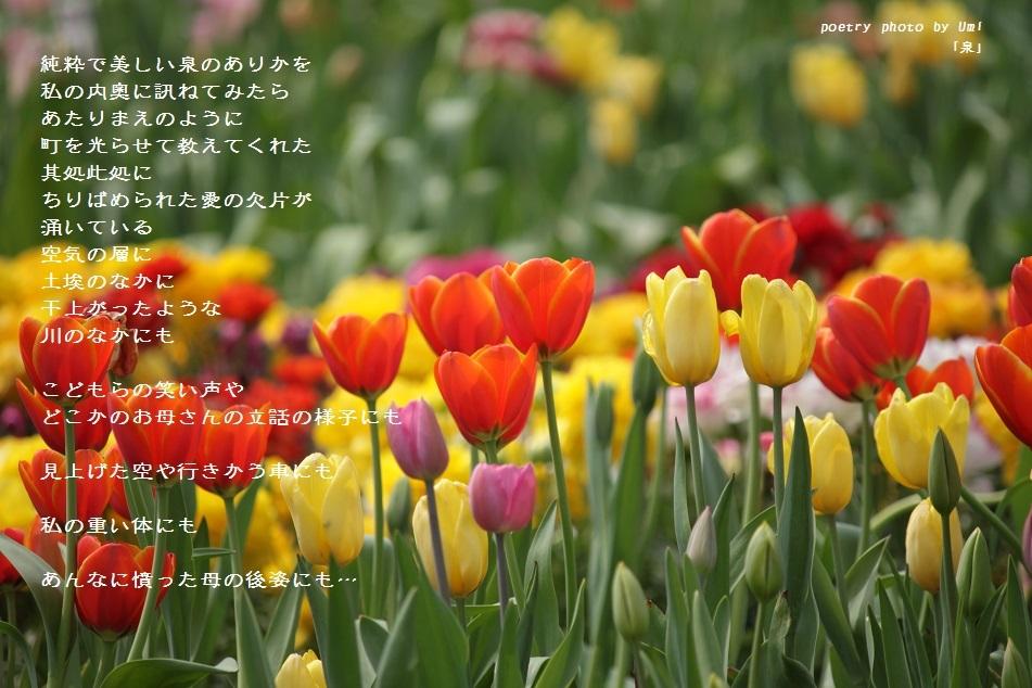 f0351844_18204967.jpg