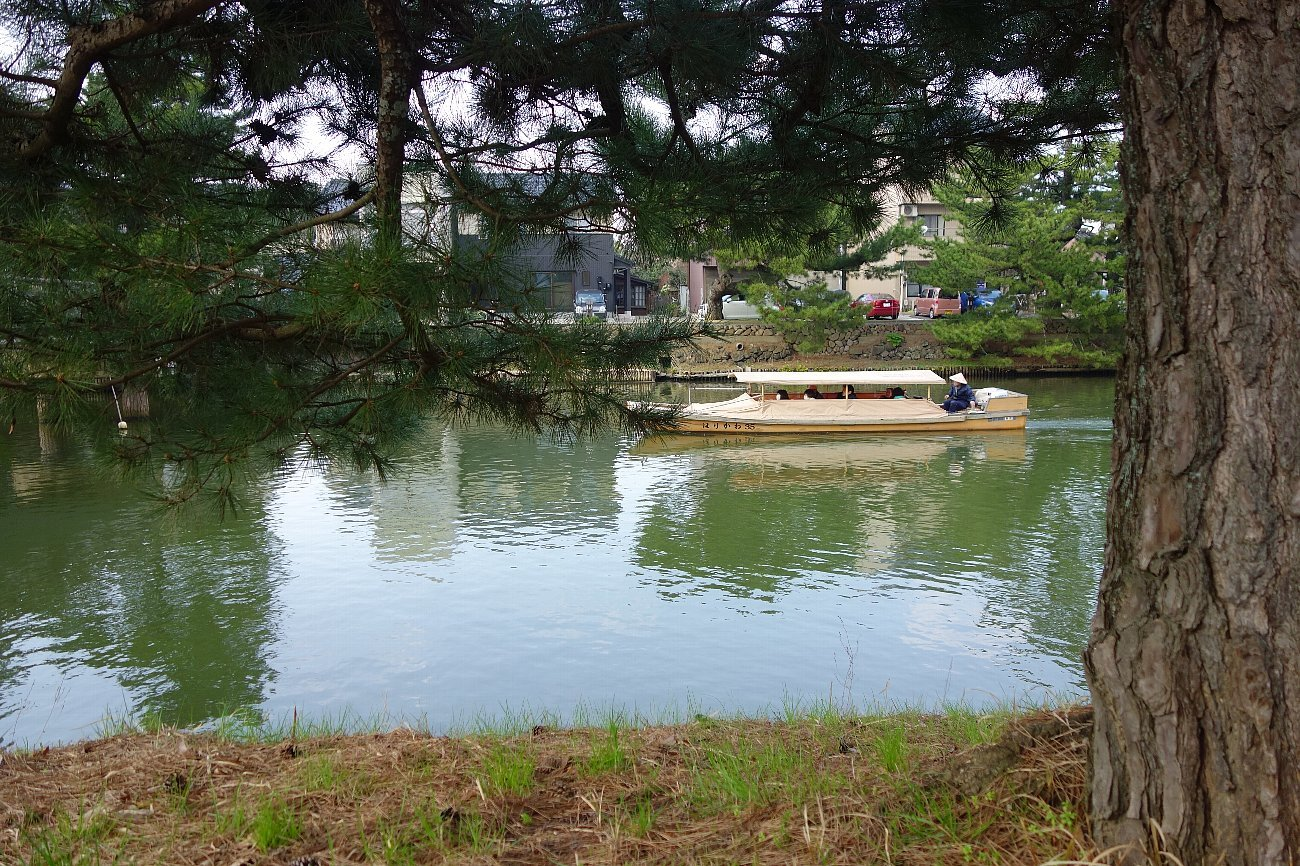 松江城の堀端を歩く_c0112559_08201160.jpg