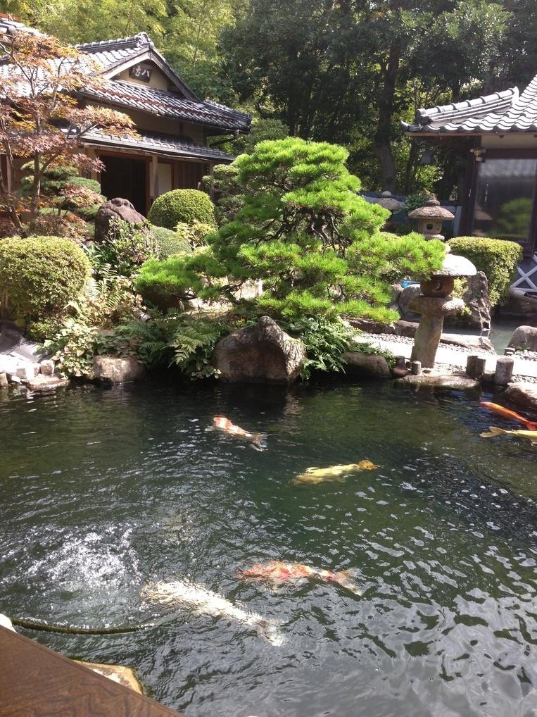 松江城の堀端を歩く_c0112559_08415222.jpg