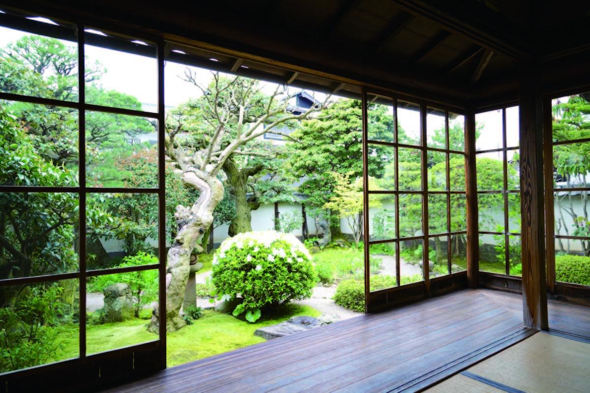 松江城の堀端を歩く_c0112559_08480485.jpg