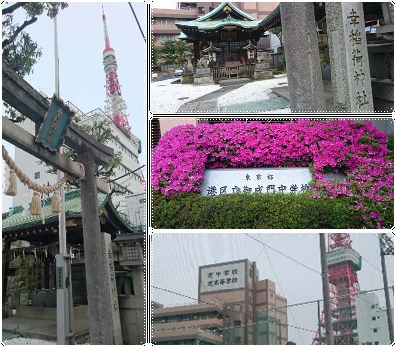 東京タワー夜桜night(3)_b0236665_10564067.jpg