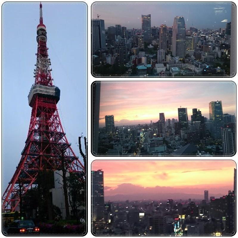 東京タワー夜桜night(3)_b0236665_11021018.jpg