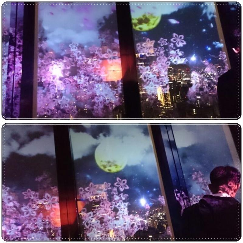 東京タワー夜桜night(3)_b0236665_11222888.jpg