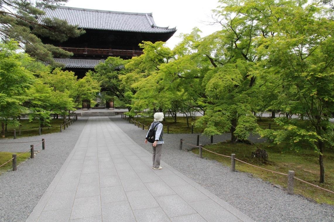 南禅寺近辺の朝の散歩_a0107574_19290894.jpg