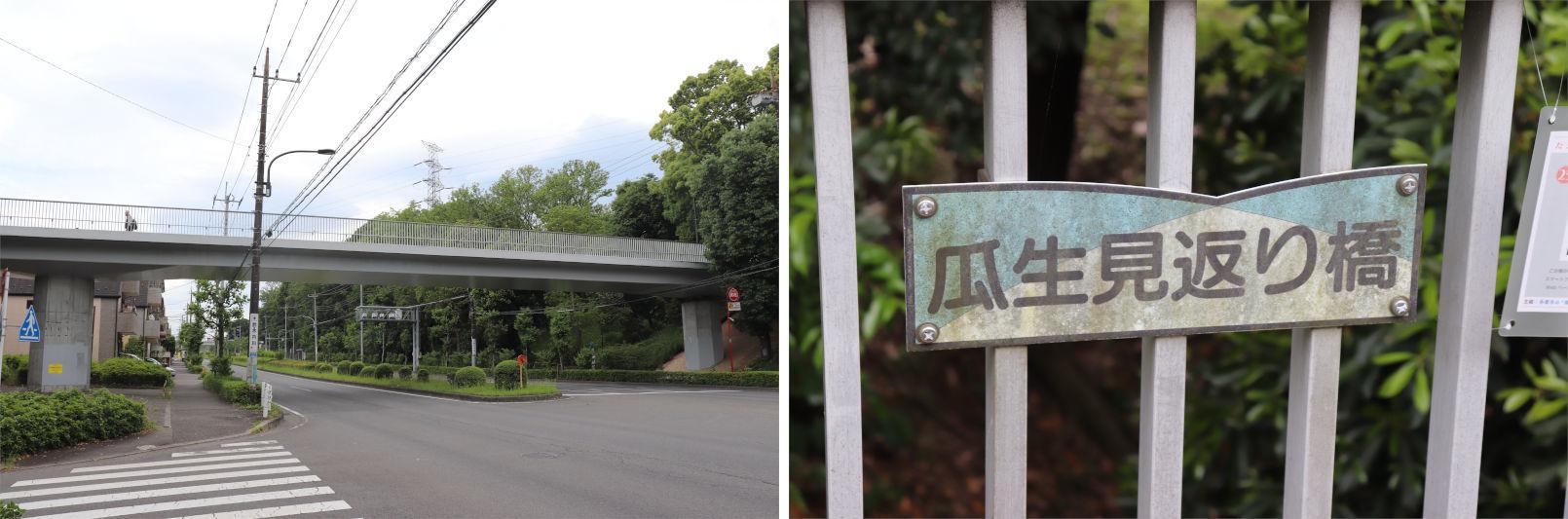 [多摩NTの橋ぜんぶ撮影PJ] No.91~96 卸売市場付近の橋_a0332275_23101725.jpg