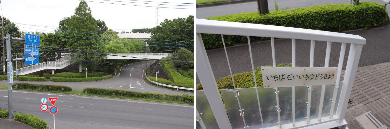[多摩NTの橋ぜんぶ撮影PJ] No.91~96 卸売市場付近の橋_a0332275_23343758.jpg