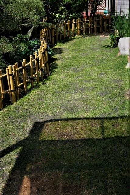 北摂の5月の庭_f0229190_13264193.jpg