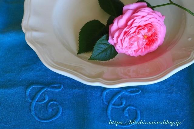 薔薇が咲きました。_f0374092_22025154.jpg