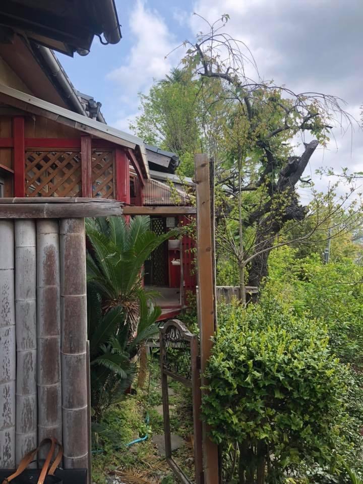 「garden」でつながるふたつの家/リノベーション」プロジェクト☆_e0029115_06235320.jpeg