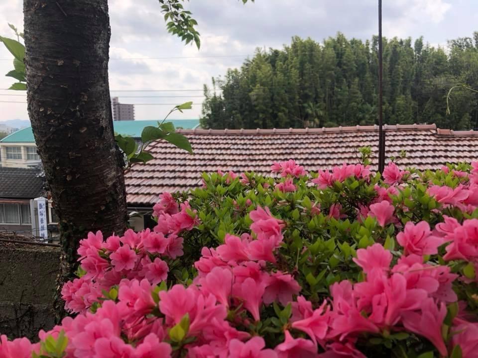「garden」でつながるふたつの家/リノベーション」プロジェクト☆_e0029115_06242829.jpeg