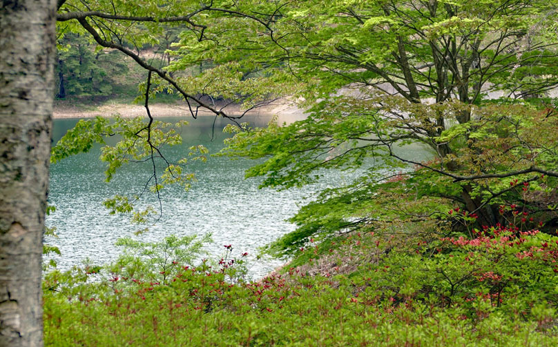 福島県伊達郡桑折町 「春の半田沼」_d0106628_21260196.jpg