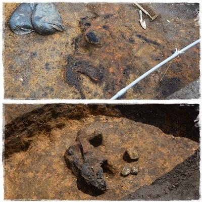 発掘!!村最大級の竪穴住居跡なのだ!_c0259934_11080276.jpg