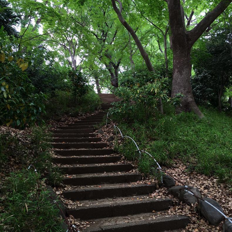 山手線一周ウォークで登った「登らない山」四ヶ所_c0060143_09205794.jpg