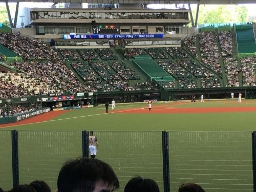 翔んで埼玉、千葉へ野球旅+谷中銀座_e0326953_16231277.jpg