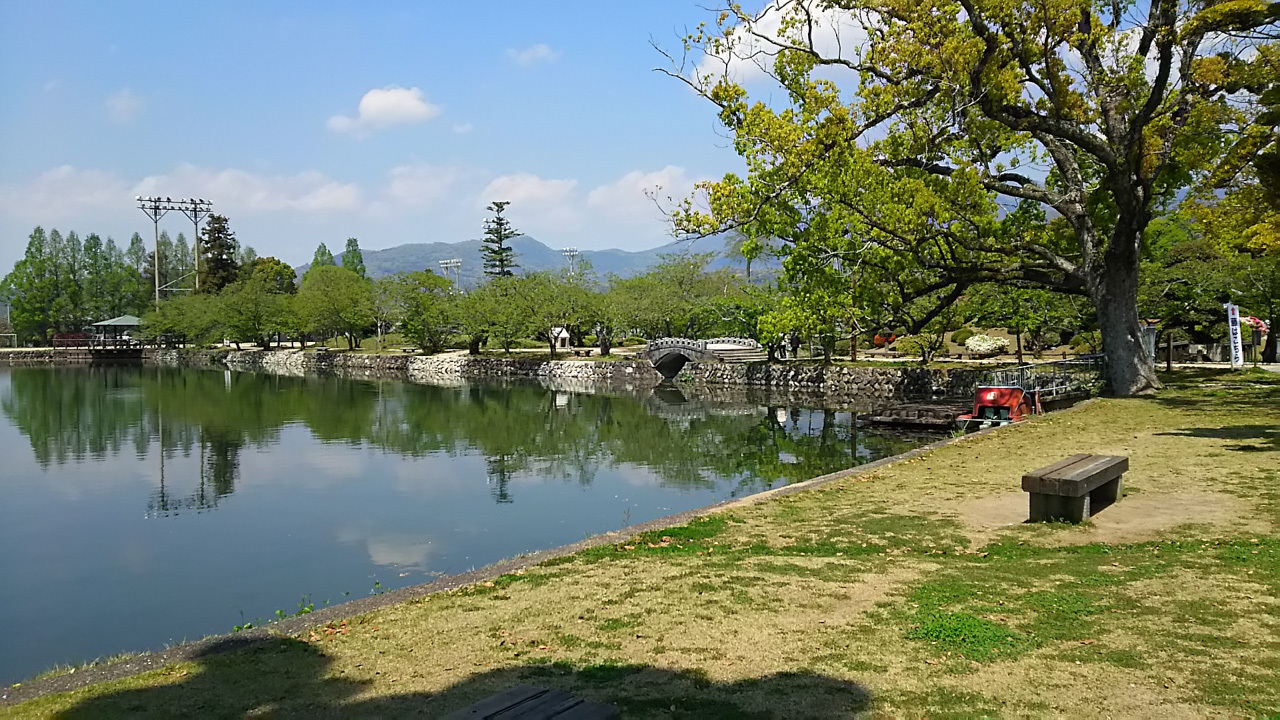 九州旅行 小城公園 カササギとシロハラ_a0052080_17585596.jpg