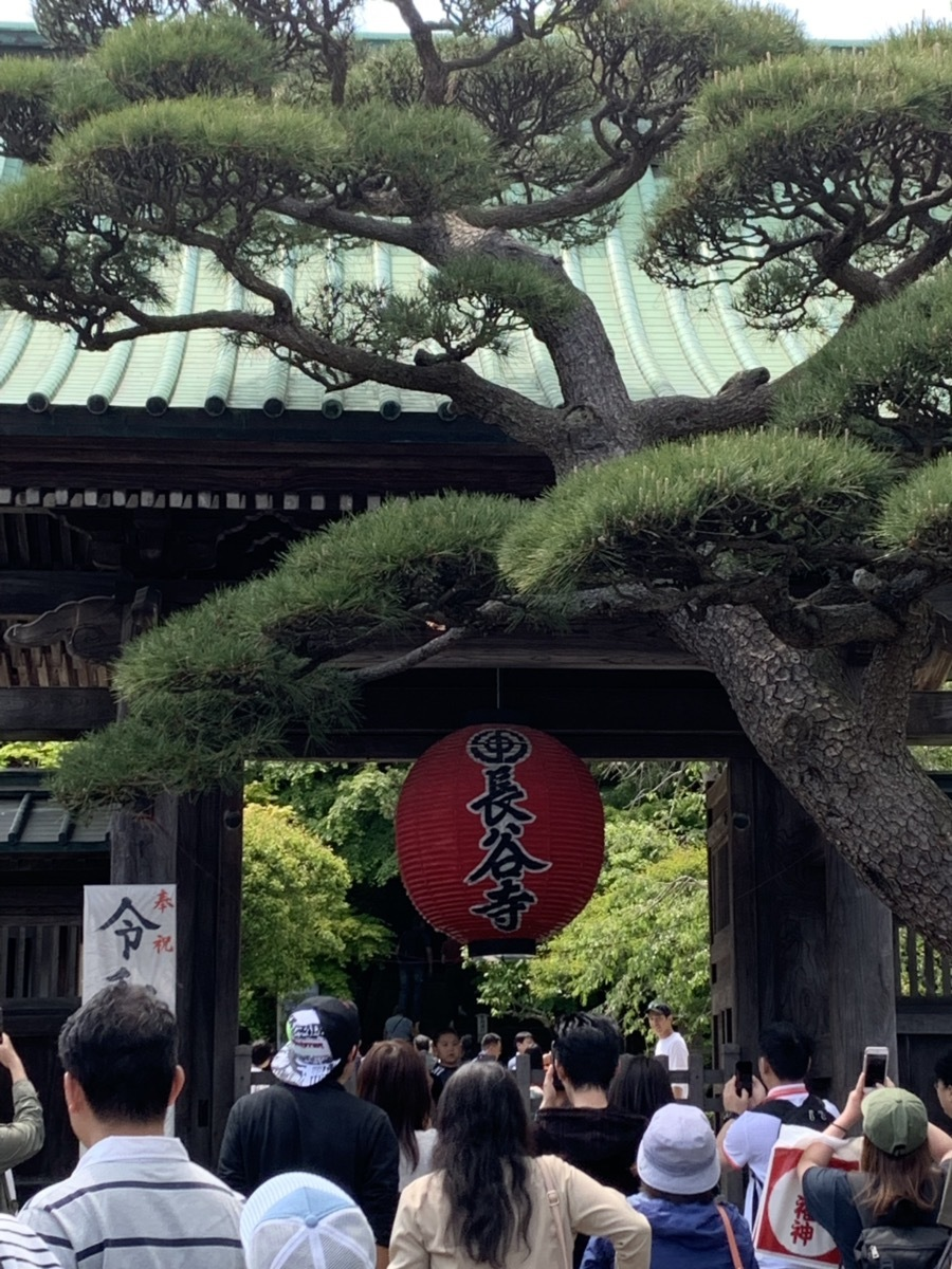 いざ鎌倉へ_f0170586_16471213.jpg