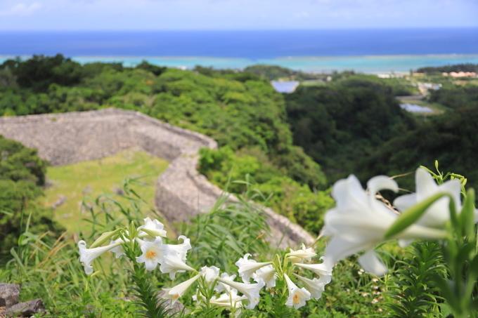 【今帰仁城跡】沖縄旅行 - 3 -_f0348831_13394383.jpg