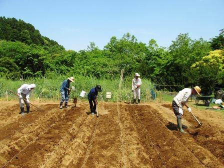 落花生の栽培体験をしよう_a0123836_13371665.jpg